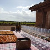 mallorca-wine-tours-train-gourmet-32
