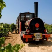 mallorca-wine-tours-train-gourmet-35