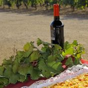 mallorca-wine-tours-train-gourmet-54