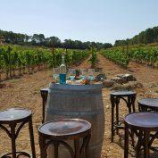mallorca-wine-tours-vip-finca-00