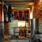 mallorca-wine-tours-vip-finca-21