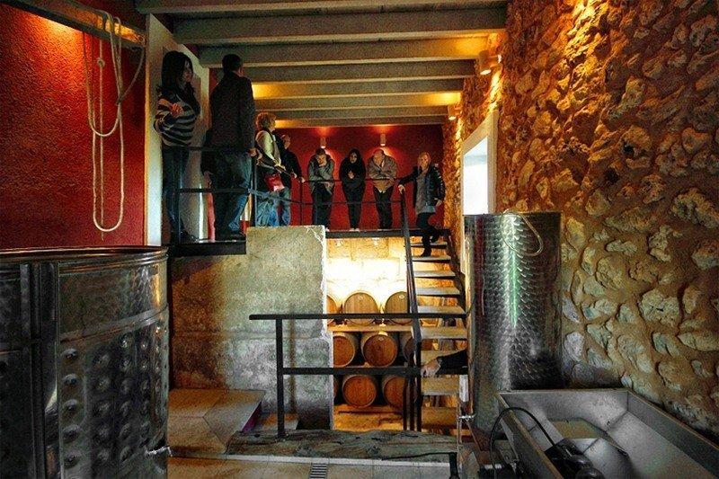 Mallorca Wine Tours - VIP Finca Experience