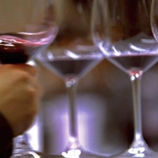 palma-old-town-wine-tours-005