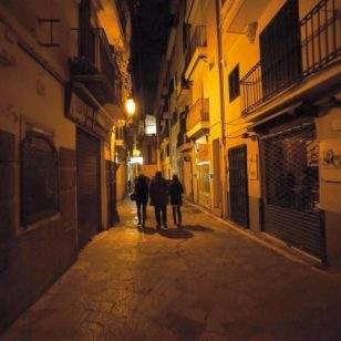 Palma Mallorca Wine Tour Activities