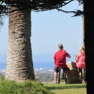 Mallorca Wine and Bike Tour