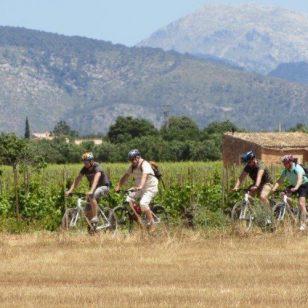 mallorca-wine-tours-bike-tour-10