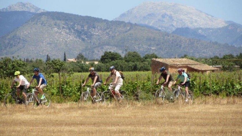 Mallorca Wine and Bike Tour