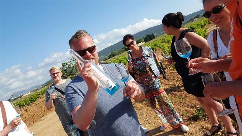 Teambuilding Wine Tour Mallorca